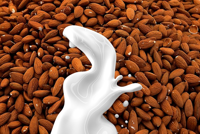 almond-milk-1623610_640