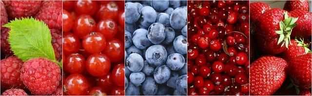 berries-1499900_640