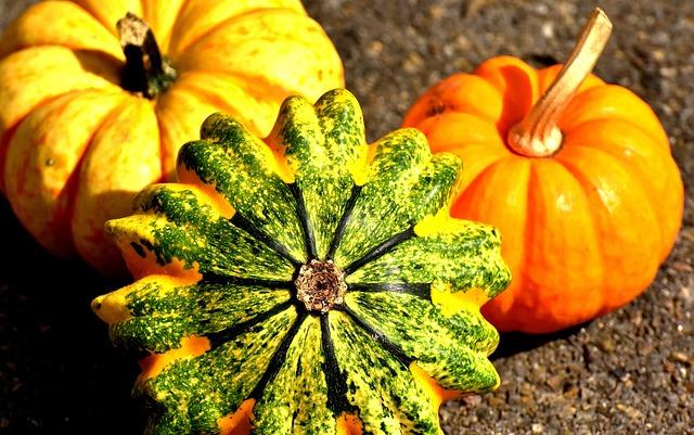 pumpkins-2204643_640.jpg