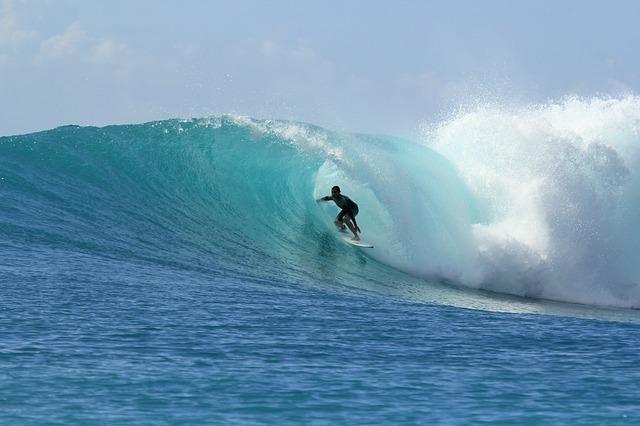 surfing-2686393_640