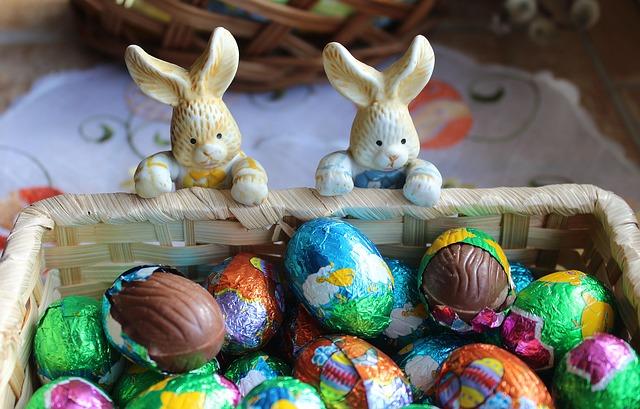 bunnies-3185267_640