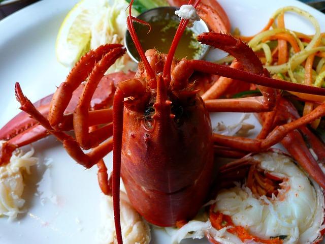 lobster-54994_640