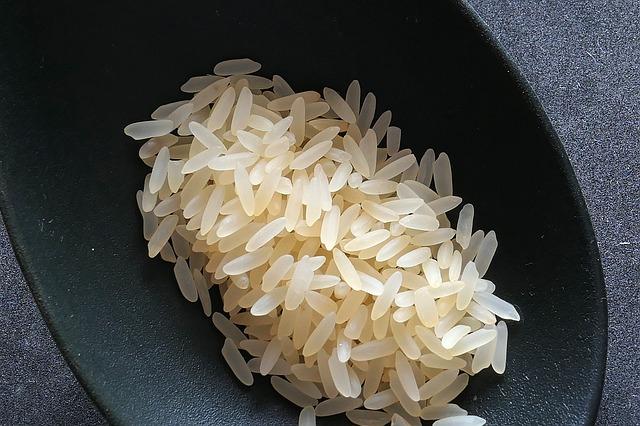 rice-2294365_640