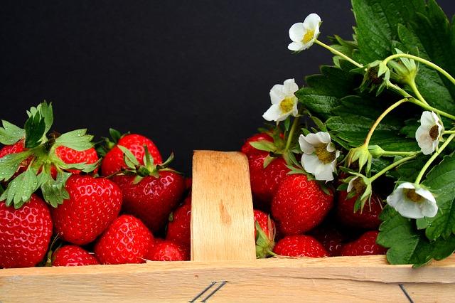 strawberries-2105656_640